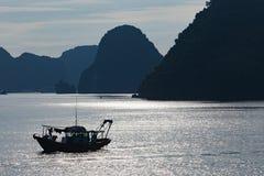 De baai van Halong in Vietnam royalty-vrije stock foto