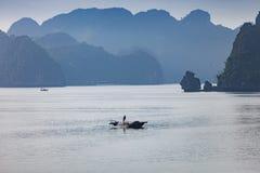 De baai van Halong in Vietnam stock afbeeldingen