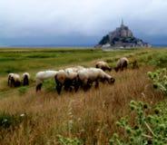De Baai van het Saint Michel van Mont Royalty-vrije Stock Afbeeldingen