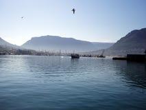 De Baai van Hout in Dromerig Blauw stock foto's