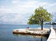 De Baai van Kotor, Dobrota, zeegezicht Stock Foto