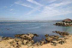 De Baai van Monterey Stock Afbeeldingen