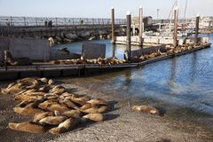 De Baai van Monterey californië royalty-vrije stock fotografie