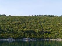 De baai van Polace van het eiland Mljet stock fotografie