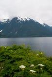 De Baai van Sitka stock fotografie