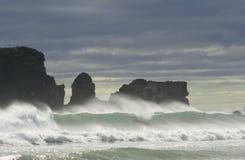 De Baai van Tauranga Royalty-vrije Stock Afbeeldingen