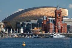 De Baaihorizon van Cardiff, uit het water wordt genomen, die het Millenniumcentrum, Pierhead-de Bouw en andere gebouwen op de hav stock afbeeldingen