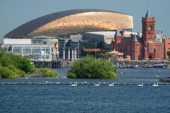De Baaihorizon van Cardiff, uit het water wordt genomen, die het Millenniumcentrum, Pierhead-de Bouw en andere gebouwen op de hav royalty-vrije stock afbeeldingen