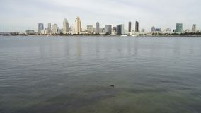 De Baaischemer van San Diego Downtown City Skyline Coronado stock footage