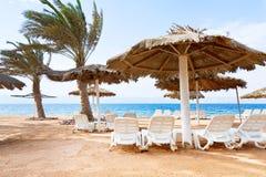 De baaistrand van het koraal in Aqaba Royalty-vrije Stock Foto