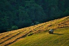 De baal van het hooi in platteland Royalty-vrije Stock Fotografie
