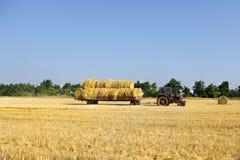 De baalbroodjes die van het tractor dragende hooi - hen stapelen op stapel Landbouwmachine die balen van hooi op een gebied verza royalty-vrije stock afbeeldingen