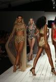 De baan van de modellengang in ontwerper zwemt kleding tijdens de modeshow van Furne Amato Stock Fotografie