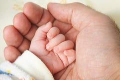 De baby dient de palm van de vader in Stock Afbeelding