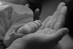 De baby dient de palm van zijn vader in Stock Fotografie