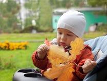 De baby en de herfst doorbladeren Stock Afbeeldingen