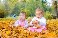 De baby en het meisje hebben pret met de herfstbladeren Stock Foto