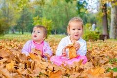 De baby en het meisje hebben pret met de herfstbladeren Royalty-vrije Stock Afbeelding
