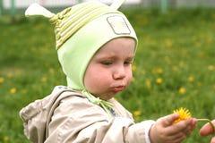 De baby trekt zijn hand voor bloem Royalty-vrije Stock Fotografie