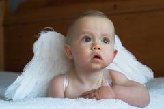 De Baby van de engel Stock Fotografie
