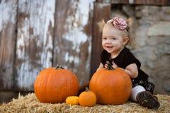 De Baby van de pompoen royalty-vrije stock afbeeldingen