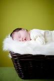 De baby van de slaap Royalty-vrije Stock Foto's