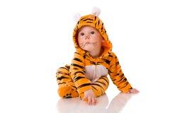 De baby van de tijger stock foto