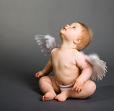De baby van de zuigeling met engelenvleugels stock afbeeldingen