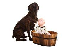 De baby van de zuigeling met hond Stock Afbeeldingen