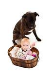 De baby van de zuigeling met hond Royalty-vrije Stock Afbeeldingen