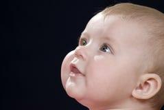 De baby van het gezicht Royalty-vrije Stock Foto's
