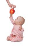 De baby wil een appel! Stock Foto