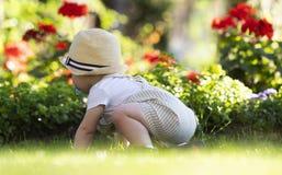 De babyjongen kruipt op het gras in de tuin op mooie de lentedag royalty-vrije stock foto