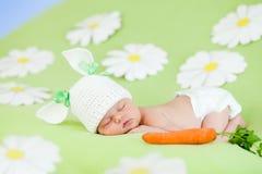 De babykonijn van de slaap en wortelnatuurlijke voeding stock afbeelding