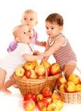 De babys van de appel stock foto's