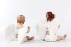 De babys van de engel Stock Foto