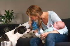 De babyslaap en de hond zijn niet Royalty-vrije Stock Foto
