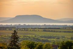 De Badacsony-berg met Meer Balaton en wijngaarden stock foto