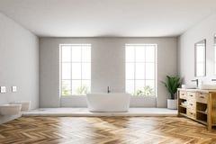 De badkamers binnenlandse, witte ton van de zolder witte luxe royalty-vrije illustratie