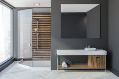 De badkamers, de gootsteen en de douche van Gray Scandinavian Vector Illustratie