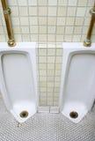 De badkamers van de jongen Stock Foto's