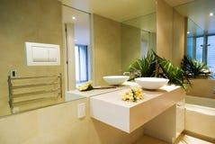 De badkamers van de ontwerper Stock Foto