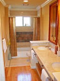 De badkamers van de ontwerper royalty-vrije stock afbeeldingen