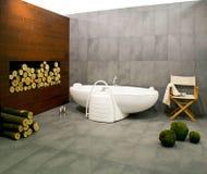 De badkamers van de winter royalty-vrije stock fotografie