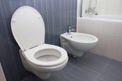 De badkamers van de Moderluxe stock afbeelding