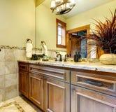 De badkamerskabinetten van de luxe in berghuis. Stock Fotografie