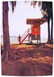 De Badmeester Life van Hawaï royalty-vrije stock afbeeldingen