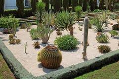 De Bahai trädgårdarna inkluderar områden med kakturs, palmliljor och agaves som växer i avskilda växtsängar Royaltyfri Bild