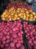De Bak van de aardappel Royalty-vrije Stock Afbeeldingen