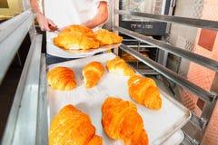 De bakker houdt hete verse croissants tegen de achtergrond van de oven Croissantsclose-up royalty-vrije stock afbeeldingen